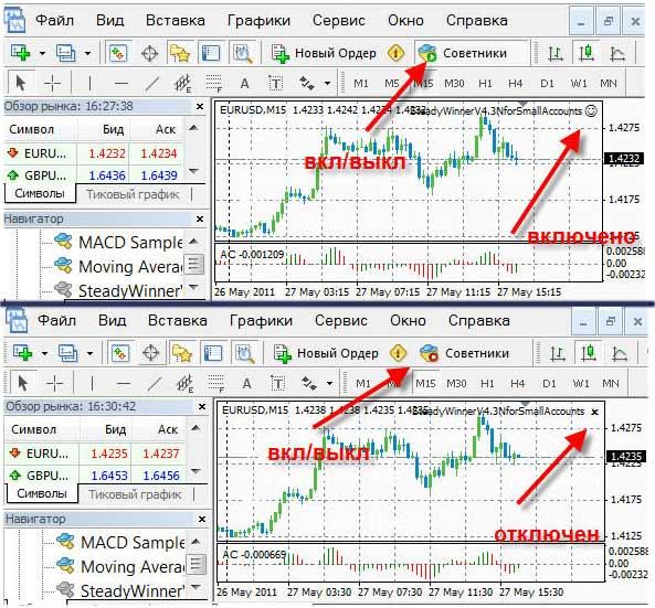 Forex investor net
